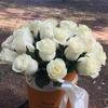 Доставка цветов и подарков Египет Каир 