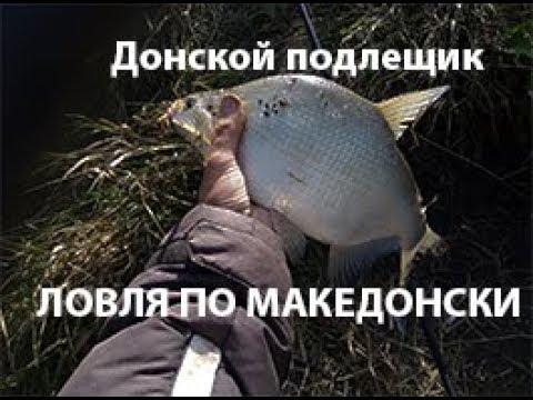 Донской подлещик по македонски