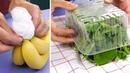 7 astuces pour éviter que vos aliments ne pourrissent.
