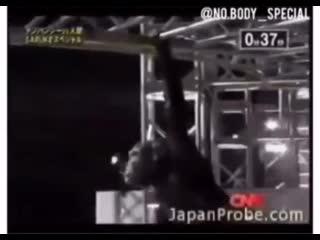 A chimpanzee doing the Ninja Warrior course in Japan
