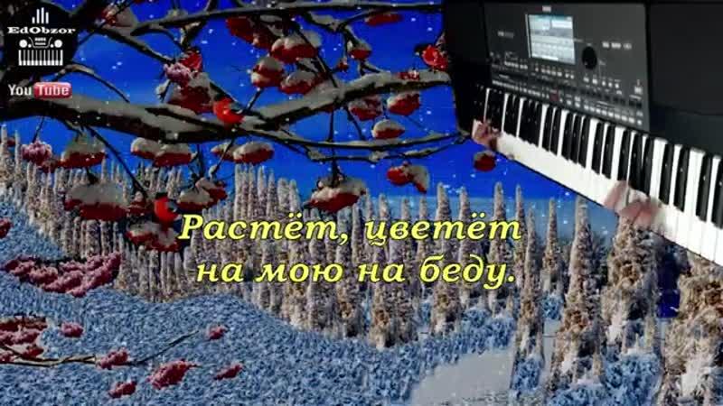 Галина на синтезаторе KORG PA600 КАРАОКЕ Как играть