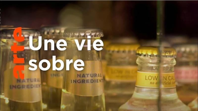 Découvrir le quotidien sans alcool ARTE Regards