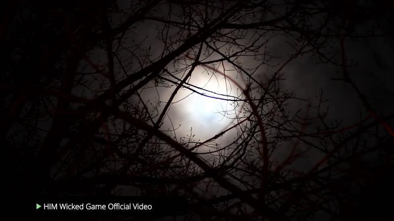 Упоротая Белка 3 Dead by Daylight