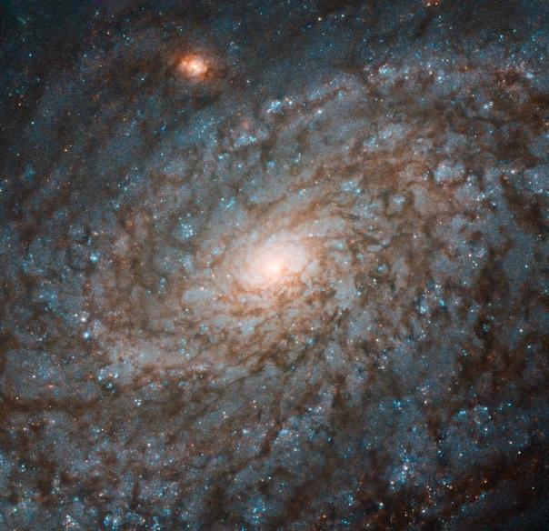 Астрономы поделились новым изображением, полученным космическим телескопом «Хаббл»