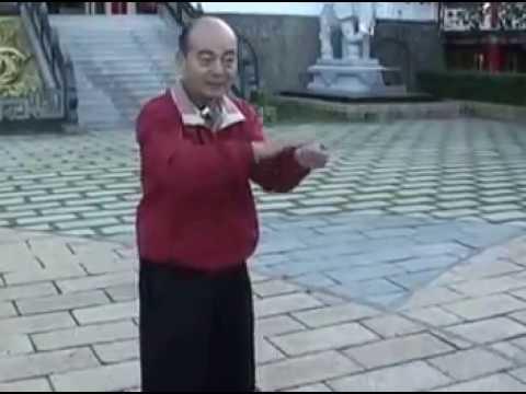 形意五形拳教學 Xing Yi Five element Fist Tutorial