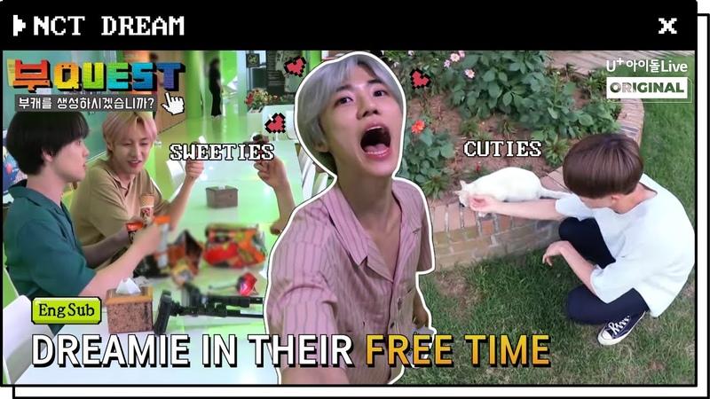 (Eng Sub) BuQUEST of NCT DREAM BEHIND 2. FULL I 부퀘스트 I 엔시티 드림