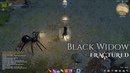 Black Widow Skills Abilities Location Bestiary Fractured MMO