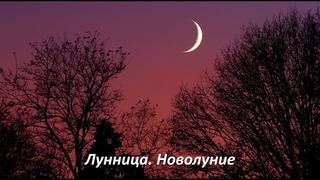 Конференция «Лунница. Новолуние» с Аленой Полынь (демо-версия)