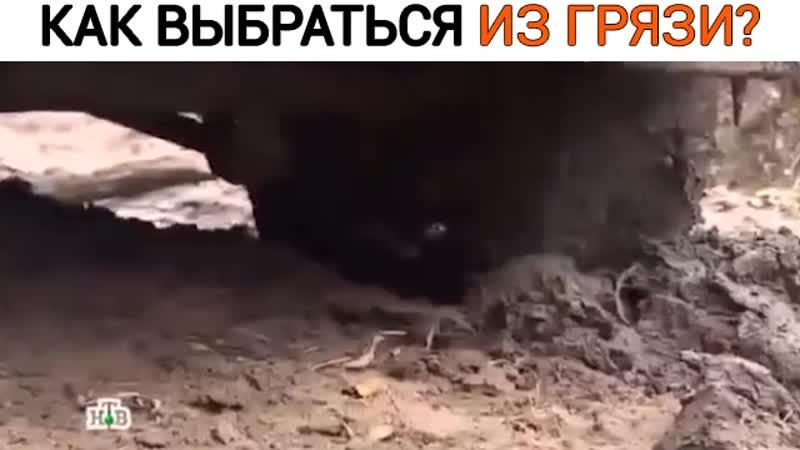 Как выбраться из грязи в одиночку