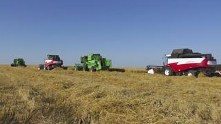 Легендарный комбайн ДОН 1500Б на уборке пшеницы