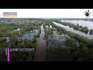 Мегаполис - Прогноз по половодью - Нижневартовск
