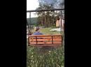 Видео от Марины Озеровой