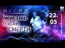 Жизнь после смерти — Stanislav Shu feat. Oksana