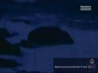 Новый Розвелл - НЛО в бухте Шег