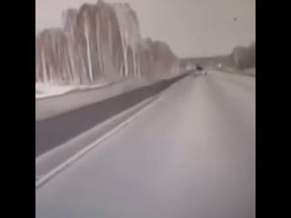 Появилось видео момента лобового ДТП на трассе Барнаул-Новосибирск
