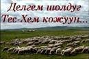 Персональный фотоальбом Салбак Оюн