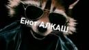Фотоальбом Егора Короля