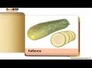 Карточки Домана Овощи Фрукты Ягоды часть 1