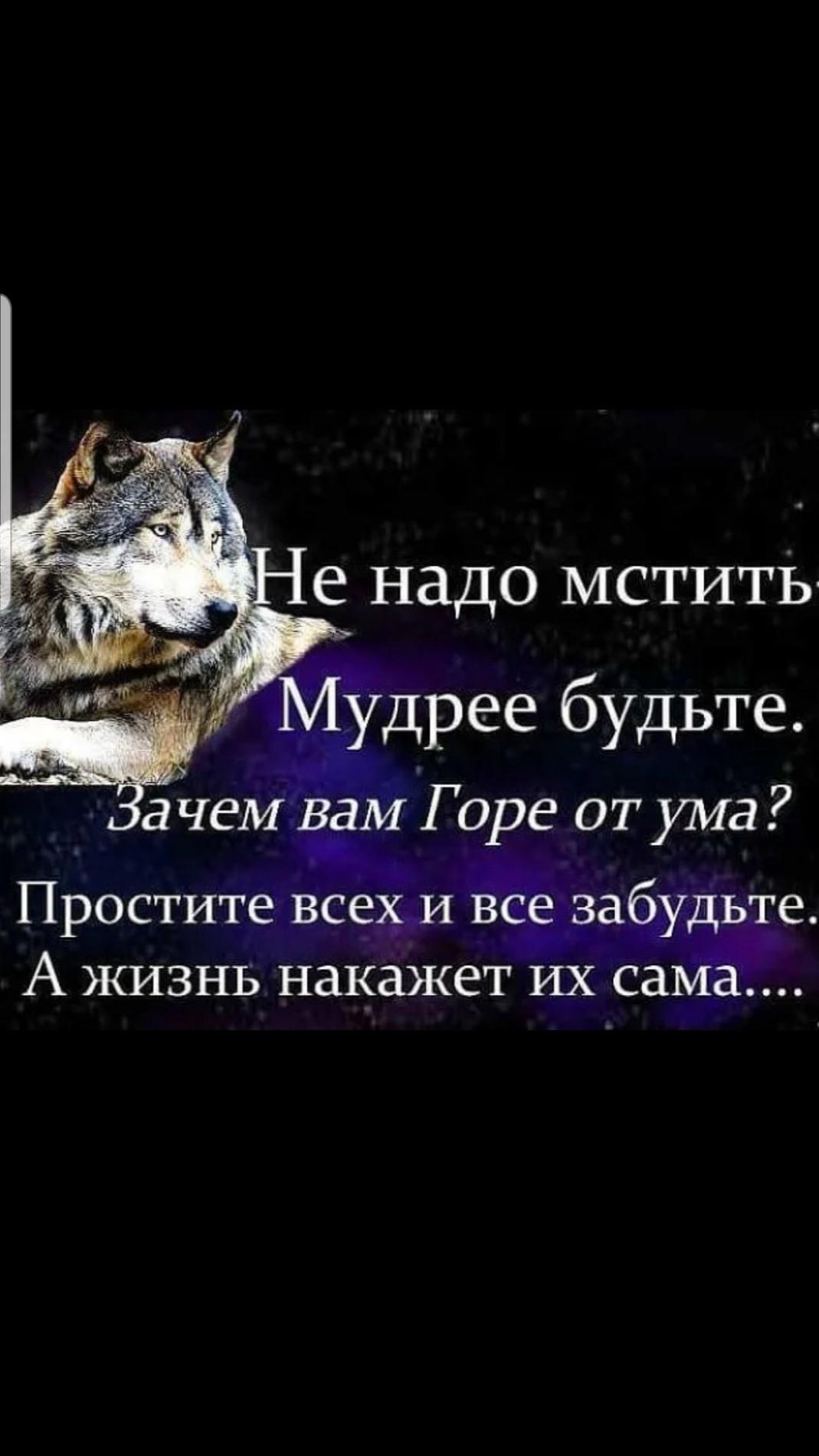 Амир, 28, Dvurechensk