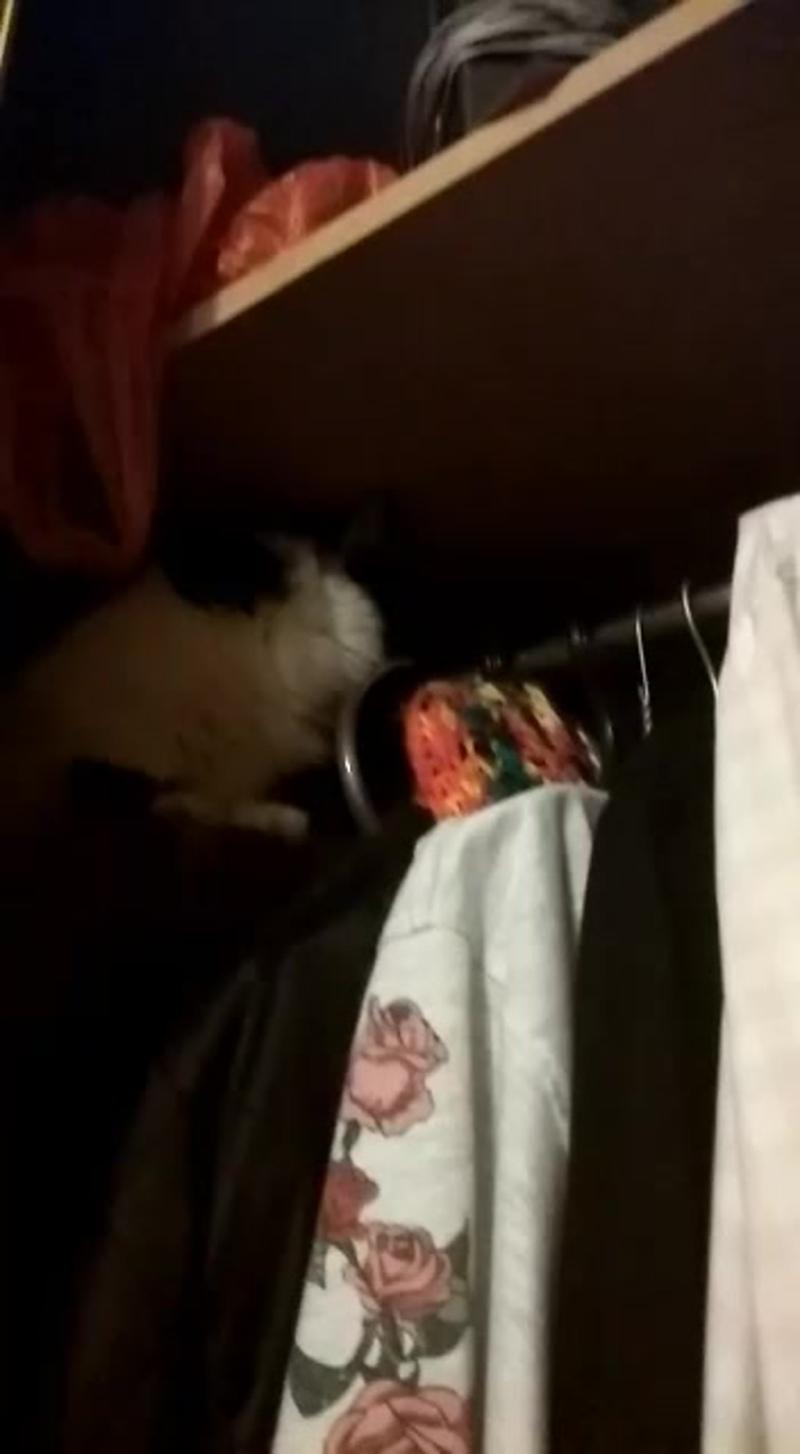 Видео от Татьяны Роговой