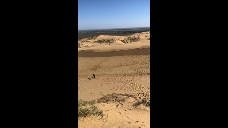 Видео от Насти Бильковой
