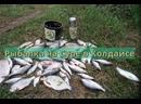 Ловля леща в мае-Рыбалка на Суре в Колдаисе