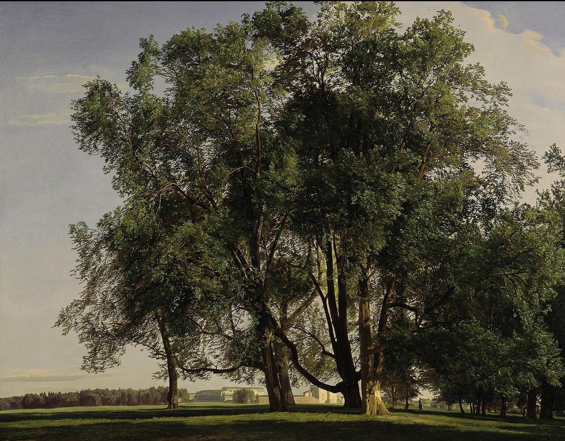 Предисловие к «Красоте» Р. Скрутона, изображение №4