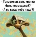 Светлана Батова