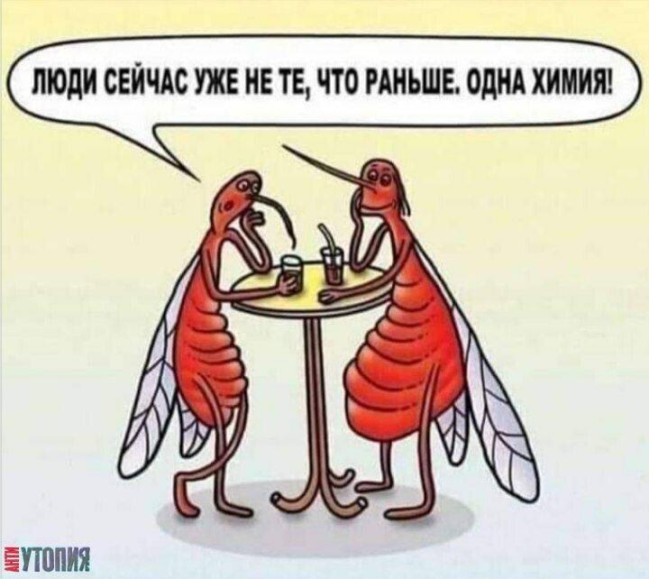 АНТИУТОПИЯ  УТОПИЯ 130709