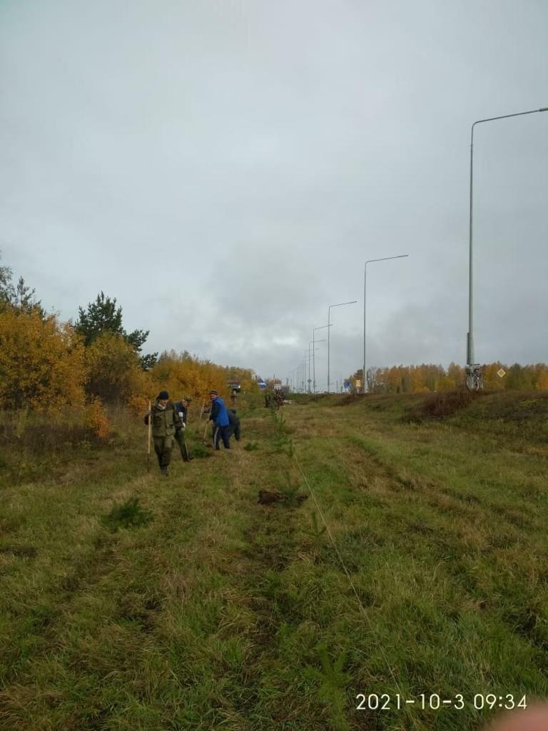 Более 200 саженцев деревьев высадили в МожгеСубботник