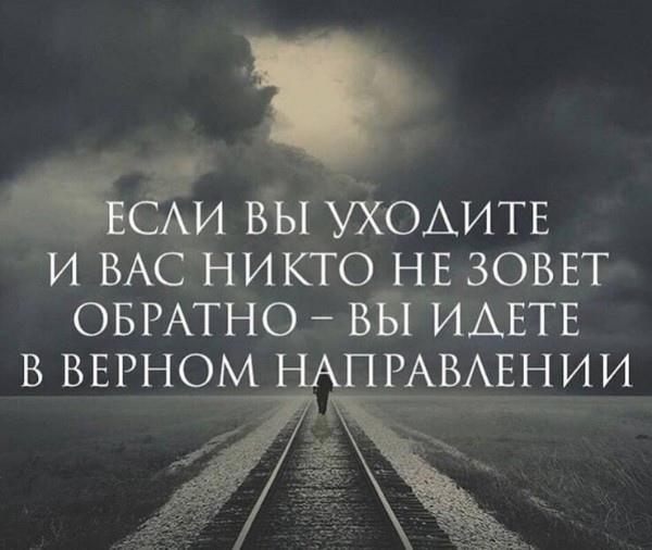 фото из альбома Татьяны Вербицкой №12
