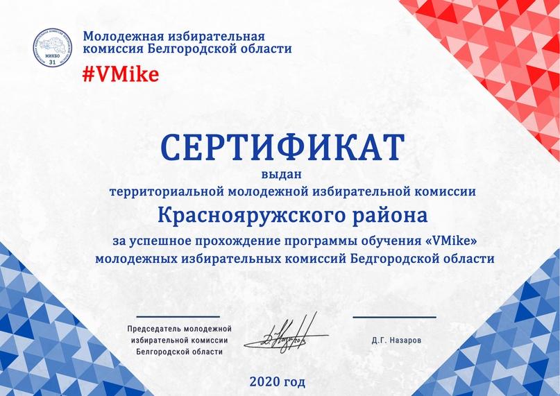 Итоги программы обучения молодежных избирательных комиссий Белгородской области «VMike», изображение №12