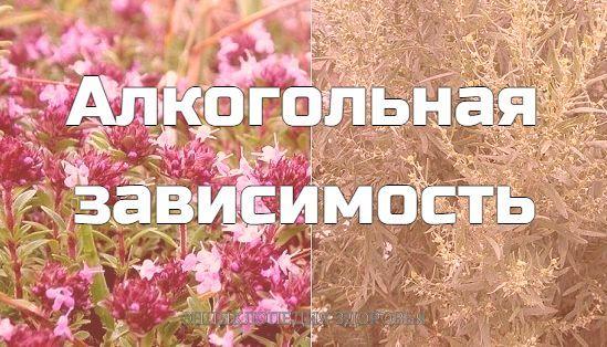 Полынь горькая и чабрец обыкновенный в соотношении 1:4, в виде отвара