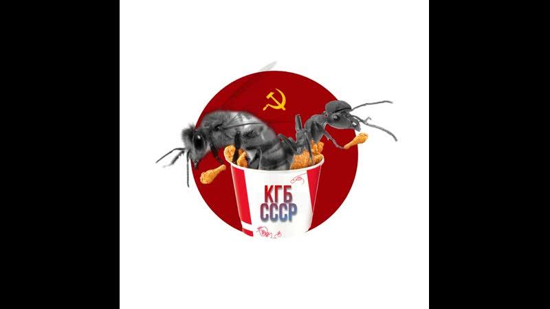 Проект Школа Лидера Команда КГБ СССР МБОУ СОШ №30