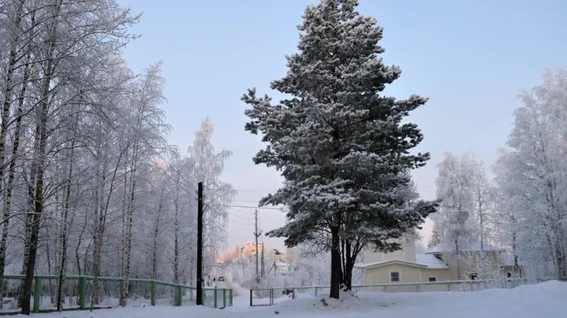 Прогулка по зимнему Луковецкому