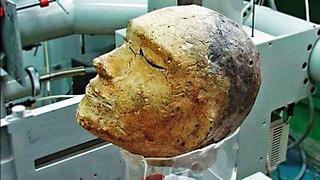 3 500 000 000 лет назад на Земле существовала жизнь. Самые необычные находки