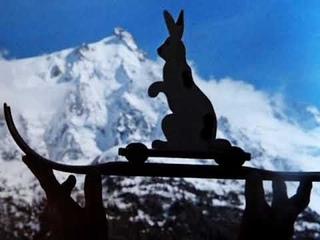 CHAMONIX , rabbit is BACK!