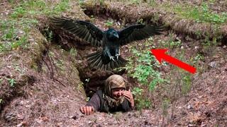 Бабуля ревела на весь лес, провалившись в глубокую яму, пока её крики не услышал ворон