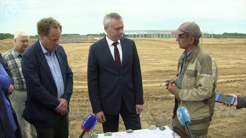 Больше тысячи тонн продукции за одни сутки Когда начнут выпускать уникальный сибирский сыр в Маслянинском районе