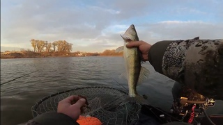 СУДАК В НЕПОГОДУ, ЛИСКИ ДОН#Рыбалкароссошь #Рыбалк...