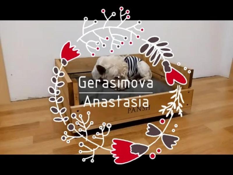 Лежанка для собаки своими руками _ Делаем лежанку для собаки из дерева (1)