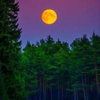 Фотография страницы Тетяны Боїшко ВКонтакте