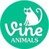 Vine animals | 6 секунд