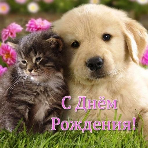 Сегодня поздравляем с Днем Рождения: Наталья Яружина ([id315513785|@id315513785]),