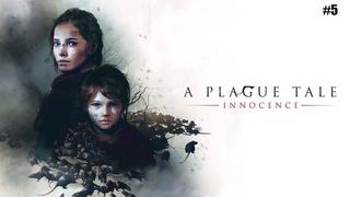A PLAGUE TALE: Innocence ➤ Прохождение #5 ➤ Недоалхимик