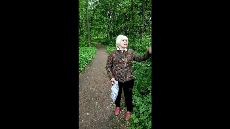 Н Н Винокурова поздравление и чтение стихотворений курский поэт