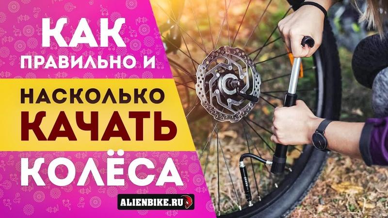 Сколько качать в колеса Правильное давление в покрышках велосипеда