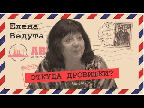 Где взять денег на новую индустриализацию Елена Ведута