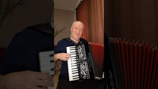 """Il tempo se ne va"" Тото Кутуньо (cover instrumental accordion)"