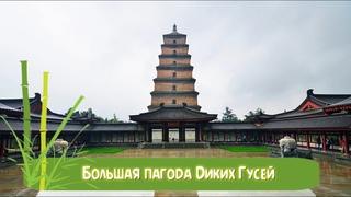 Большая пагода Диких Гусей (Giant Wild Goose Pagoda) 大雁塔